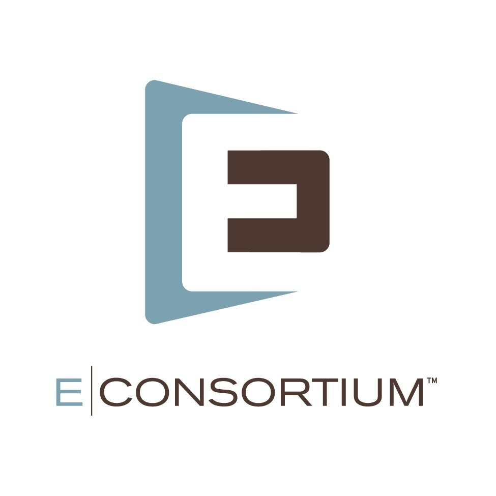 The Econsortium Group Inc