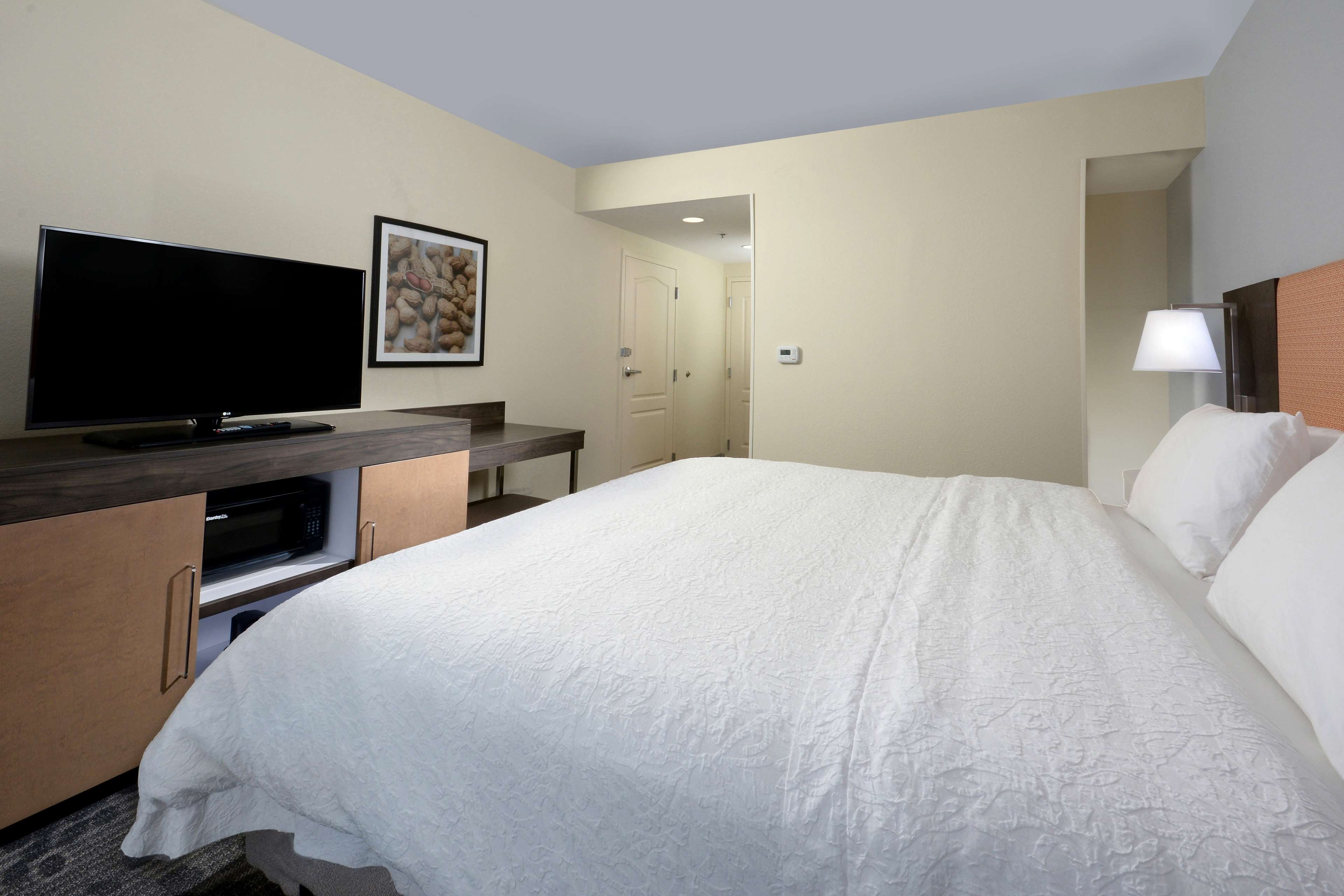 Hampton Inn & Suites Greenville/Spartanburg I-85 image 41