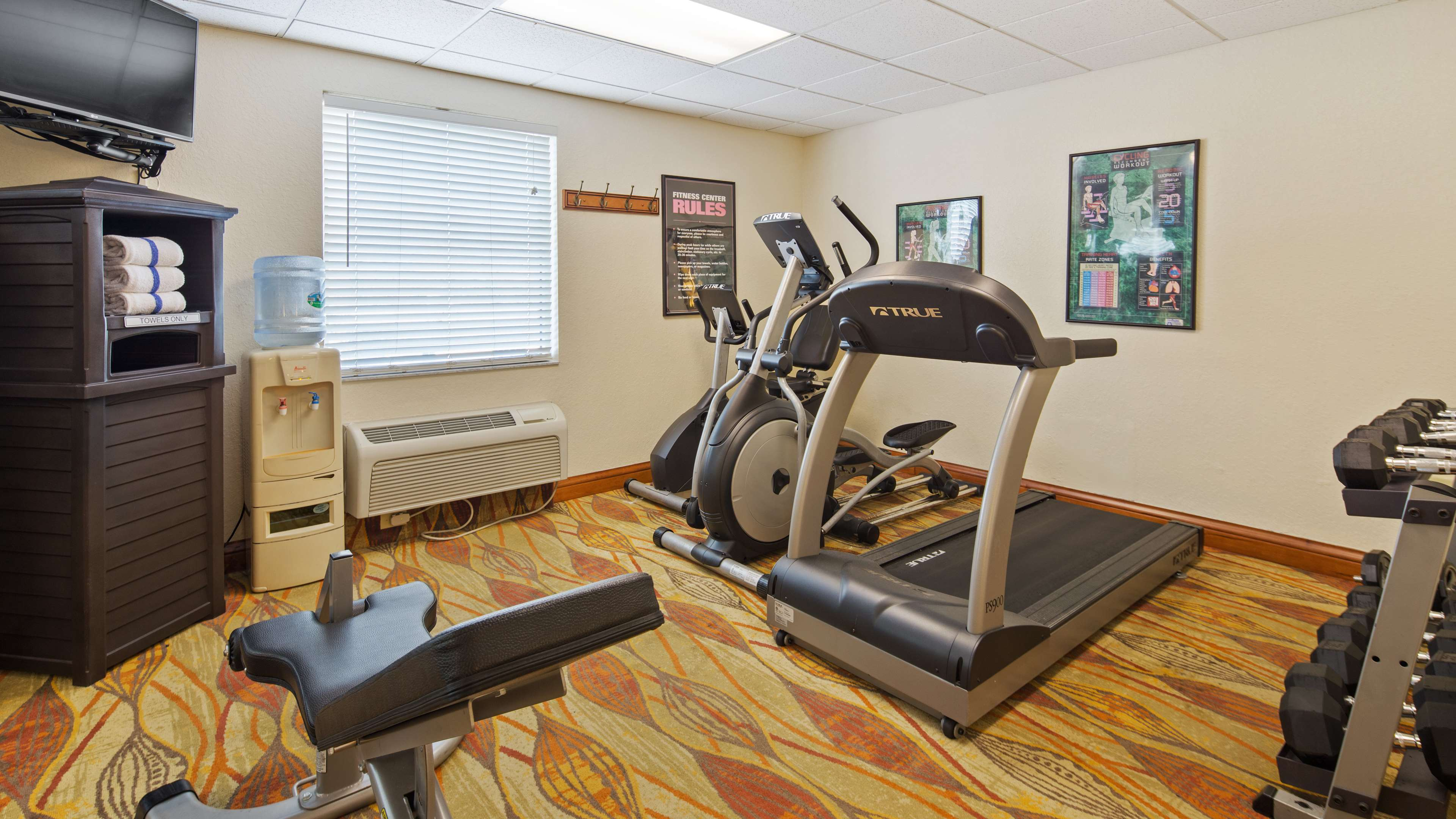 Best Western Tampa image 6