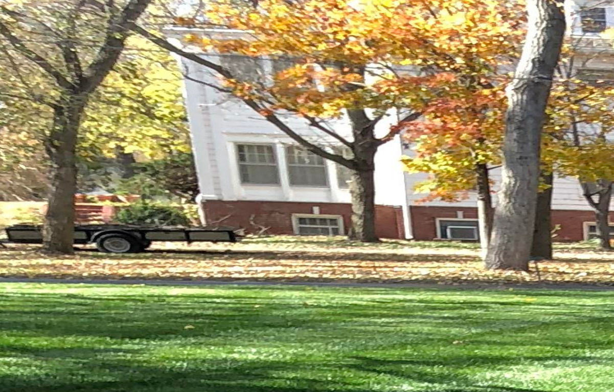 Sallee Lawn Care image 11