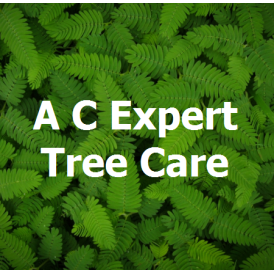 A C Expert Tree Care