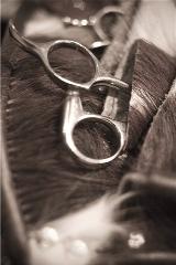 Les Salon de coiffure Ateliers Lavande  in Longueuil