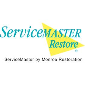 ServiceMaster Restore image 0
