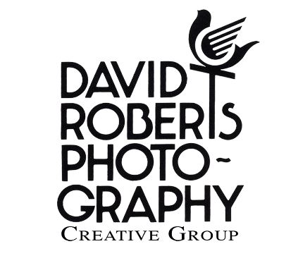 David Roberts Photography image 0