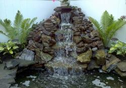 Anthony and Sons Landscape Design & Consulting image 1