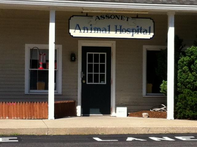 Assonet Animal Hospital image 0