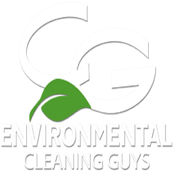 The Cleaning Guys