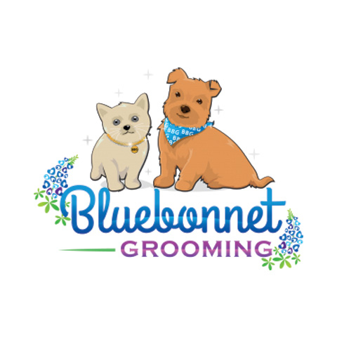 Dog Grooming New Braunfels