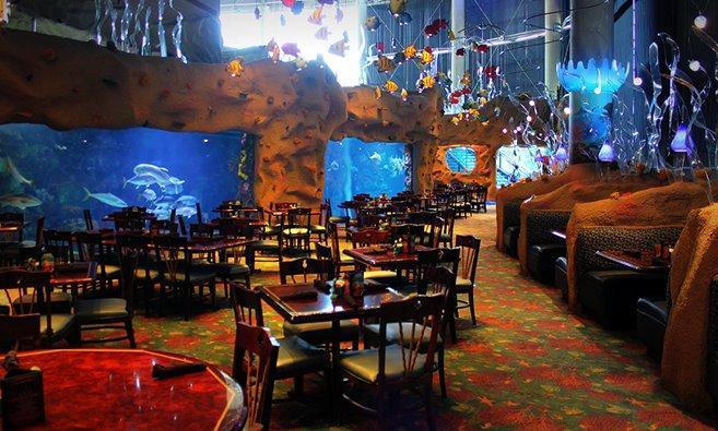 Restaurants Near The Aquarium In Denver