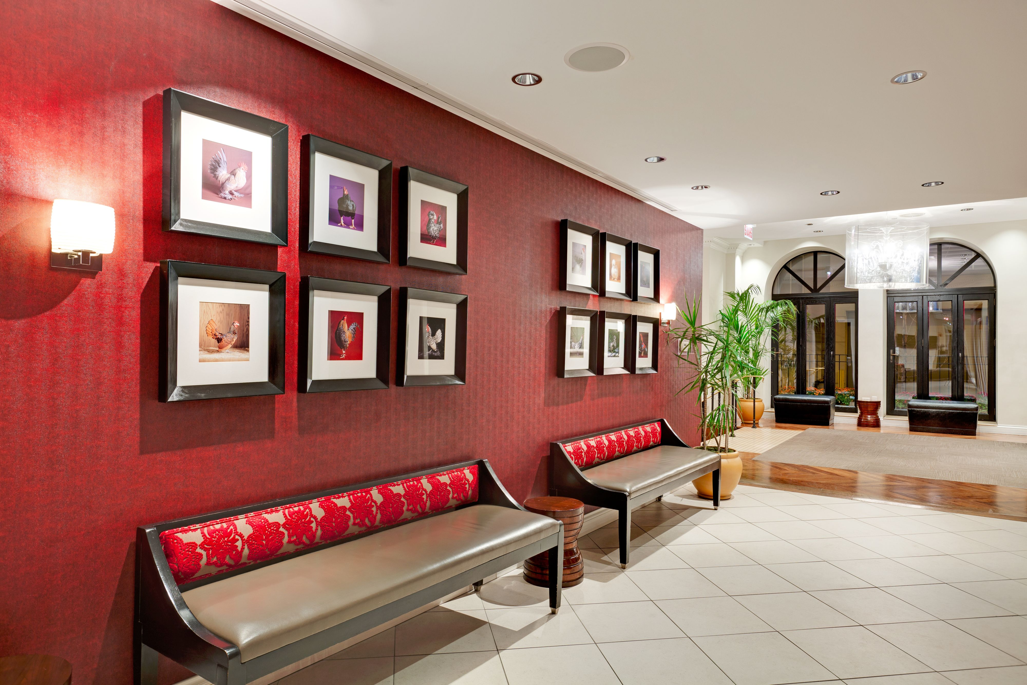 Holiday Inn Express Chicago - Magnificent Mile image 4