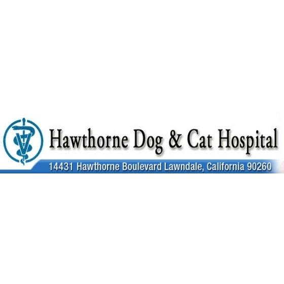 Hawthorne Dog & Cat image 5