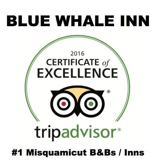 Blue Whale Inn In Misquamicut Beach Ri 02891 Citysearch