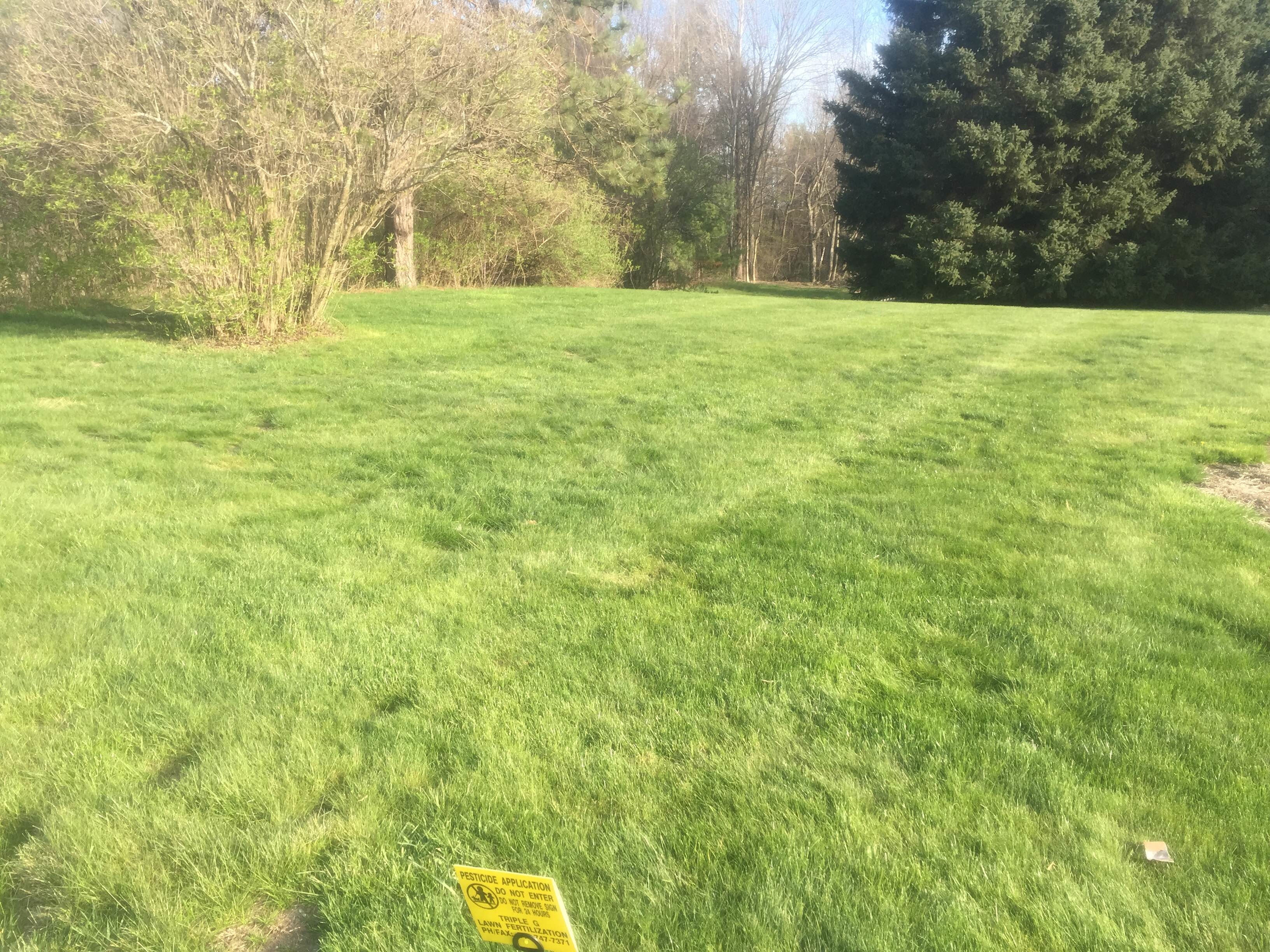 Triple g lawn fertilization lawn care service fort for Local lawn care services