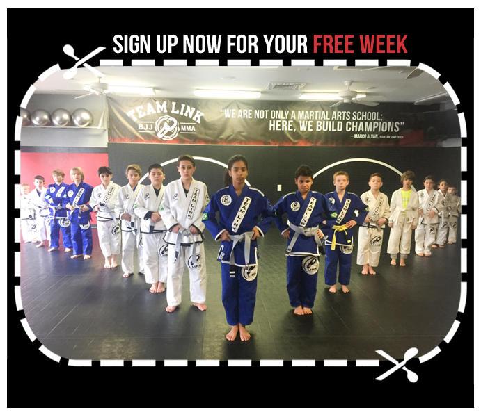 Brazilian Jiu Jitsu | Cardio MMA | Kickboxing - TEAM LINK NORTHAMPTON image 3