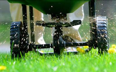 Turfco Lawn Care image 3