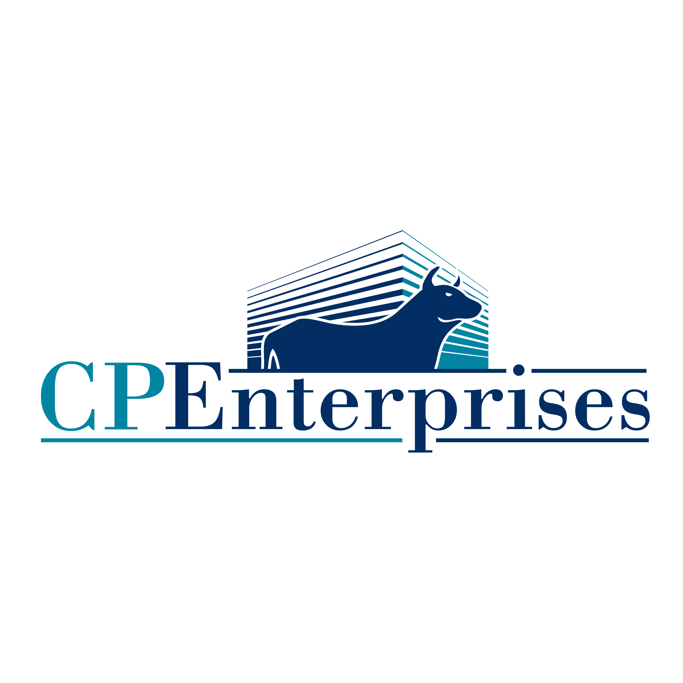 CP Enterprises image 4