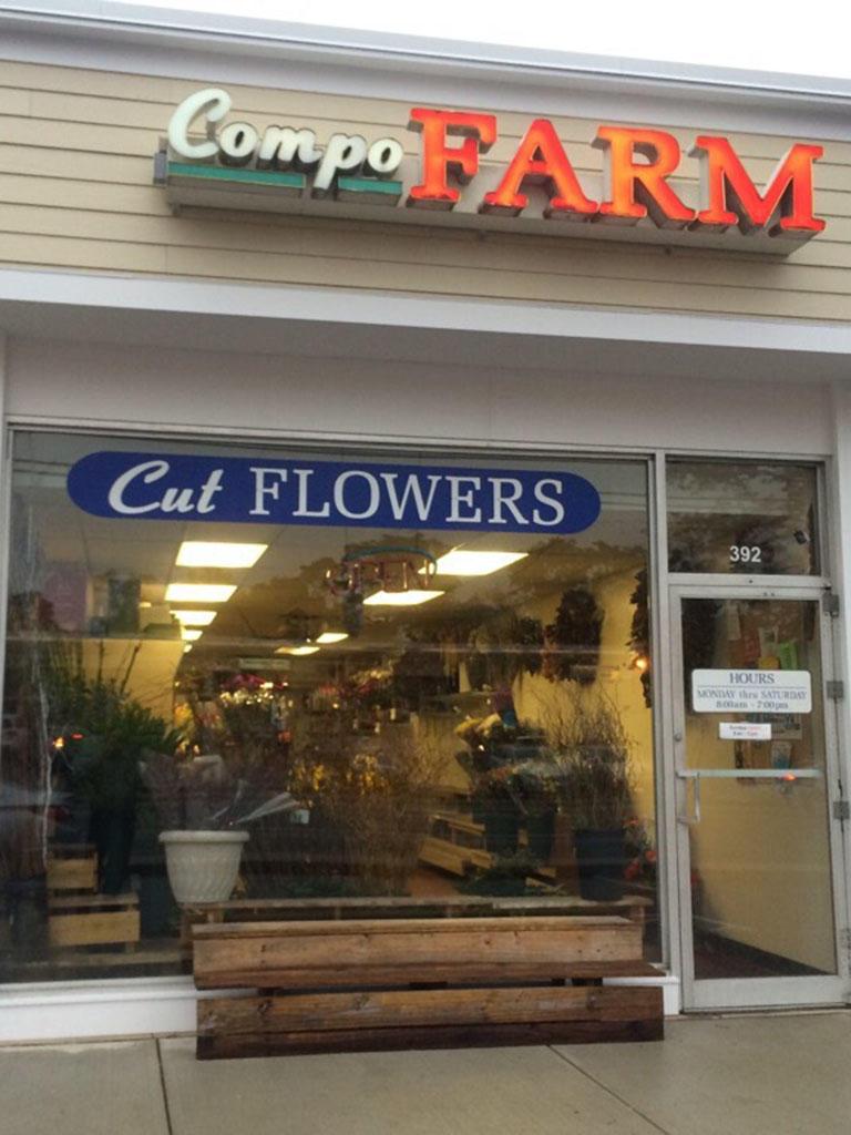 Compo Farm Flowers image 10
