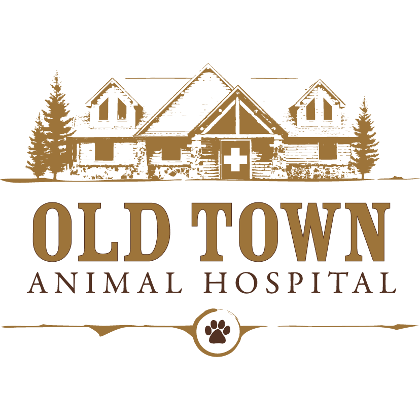 Old Town Animal Hospital