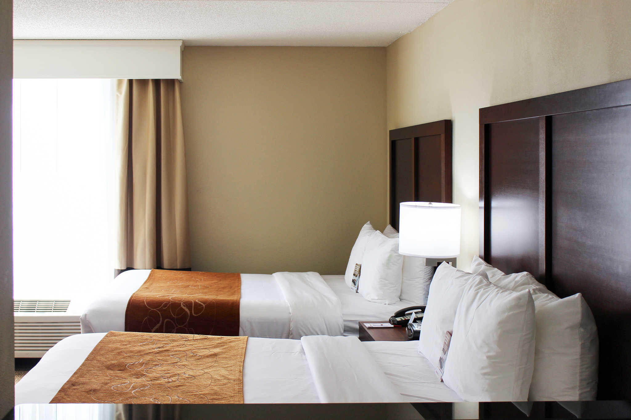 Comfort Suites Northlake image 0