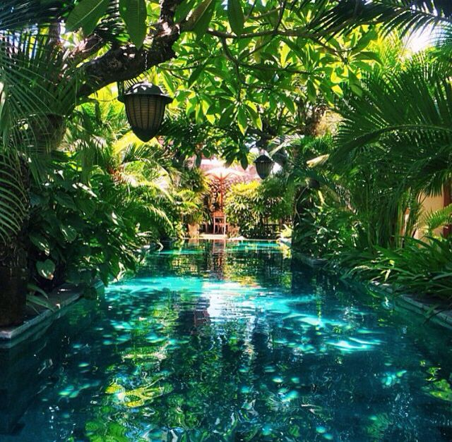 Gardens Around Swimming Pools - Best Foto Swimming Pool and ...