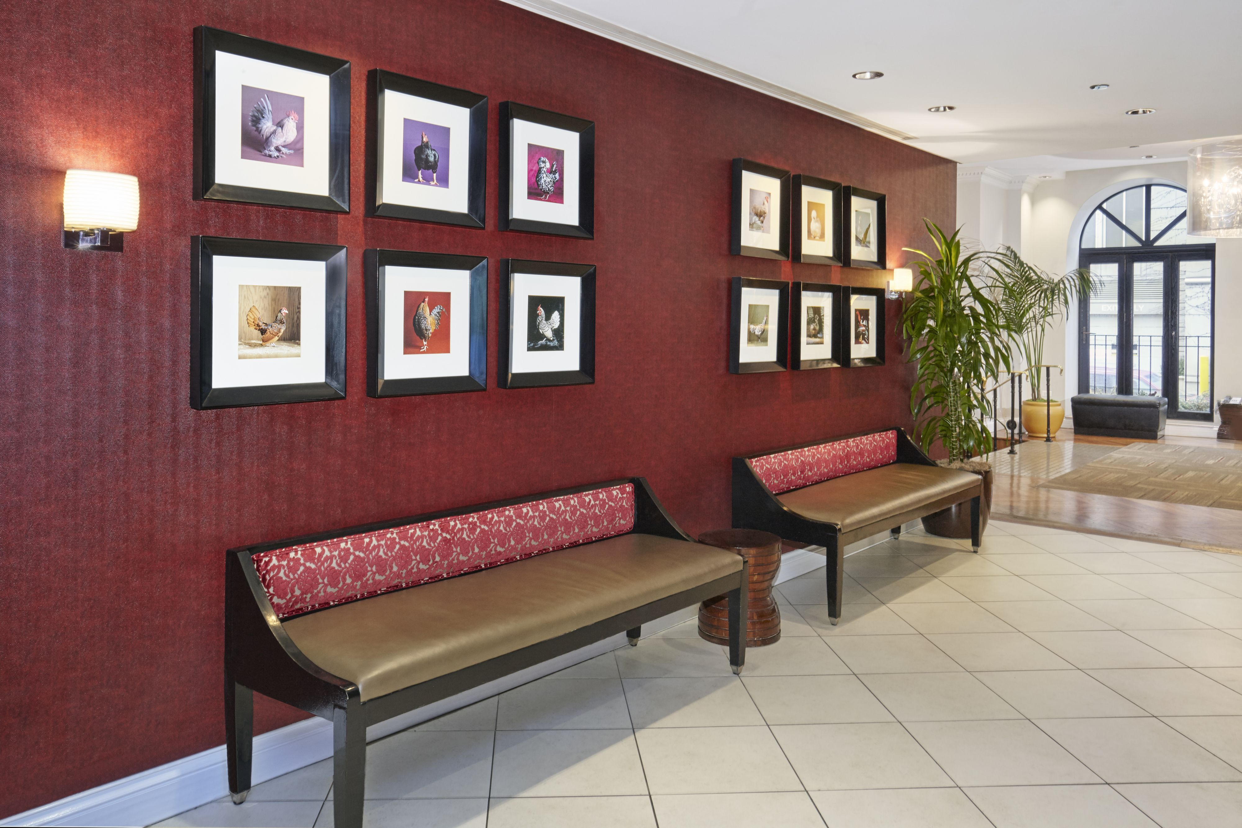 Holiday Inn Express Chicago - Magnificent Mile image 6