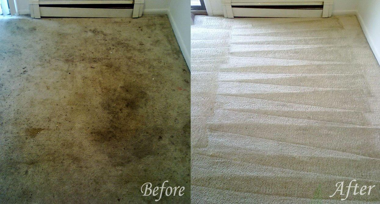 After Hourzzz Plus Carpet Cleaning image 0