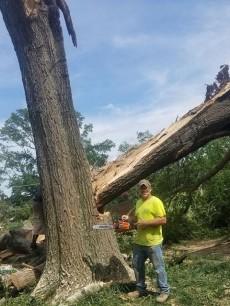 Hatchie Tree & Outdoor Services