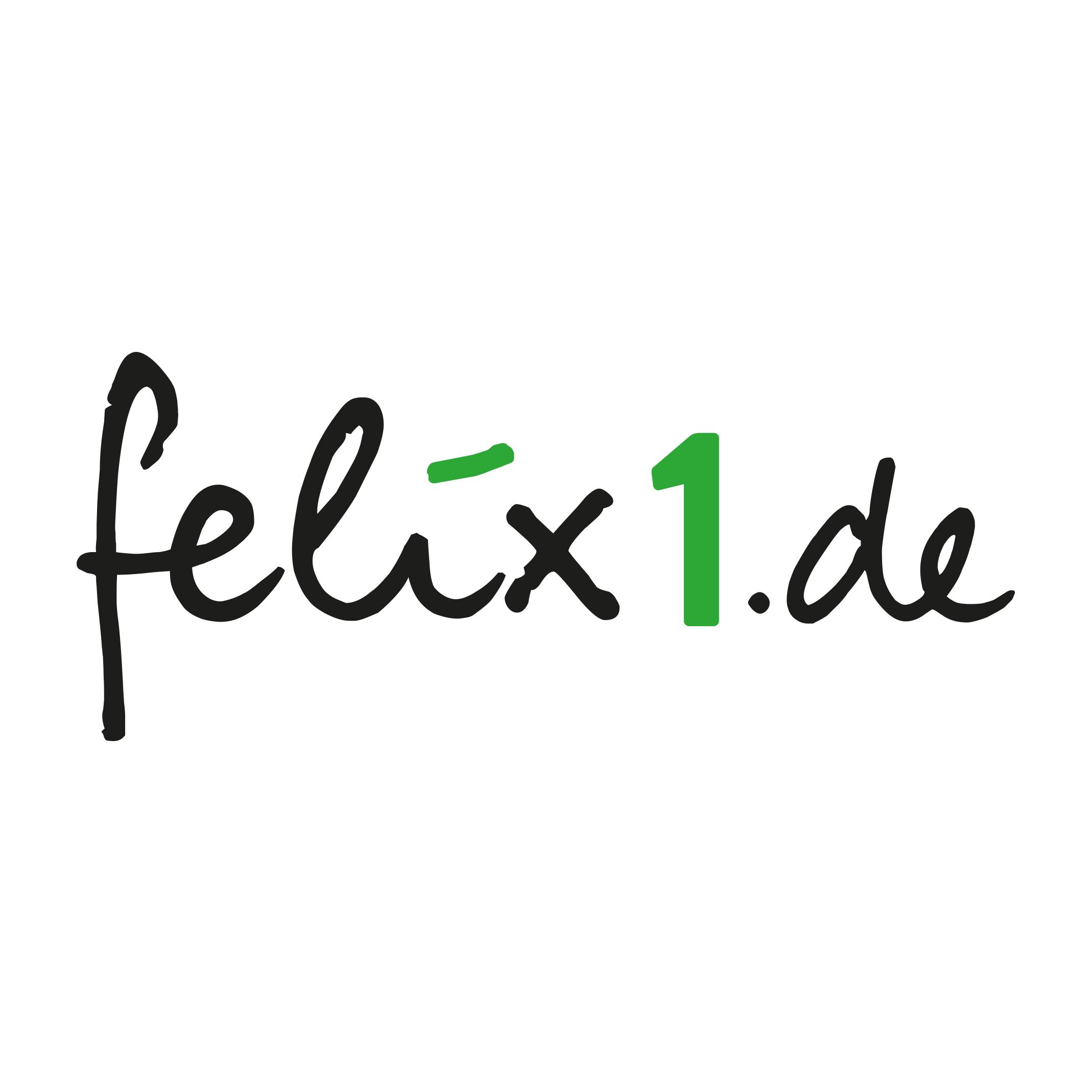 Logo von felix1.de AG Steuerberatungsgesellschaft
