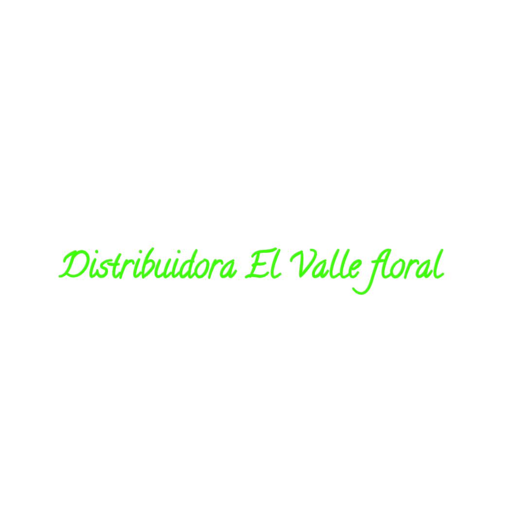 DISTRIBUIDORA EL VALLE FLORAL