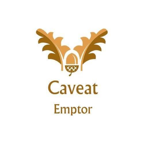 Caveat Emptor LV Home Inspections