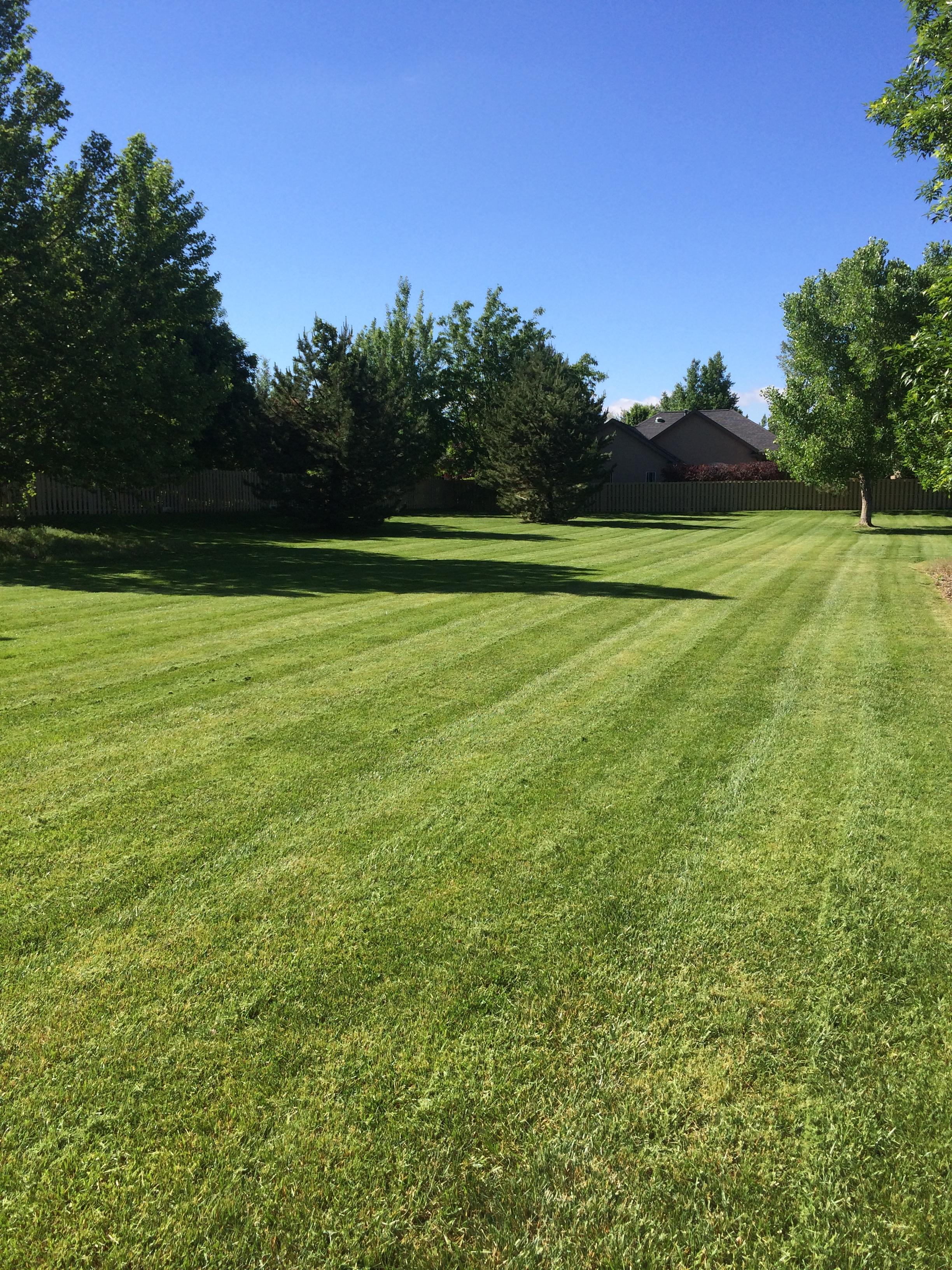 Maple Leaf Landscaping Amp Maintenance Inc Landscape