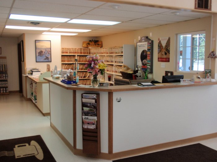 VCA Pacific Avenue South Animal Hospital image 4