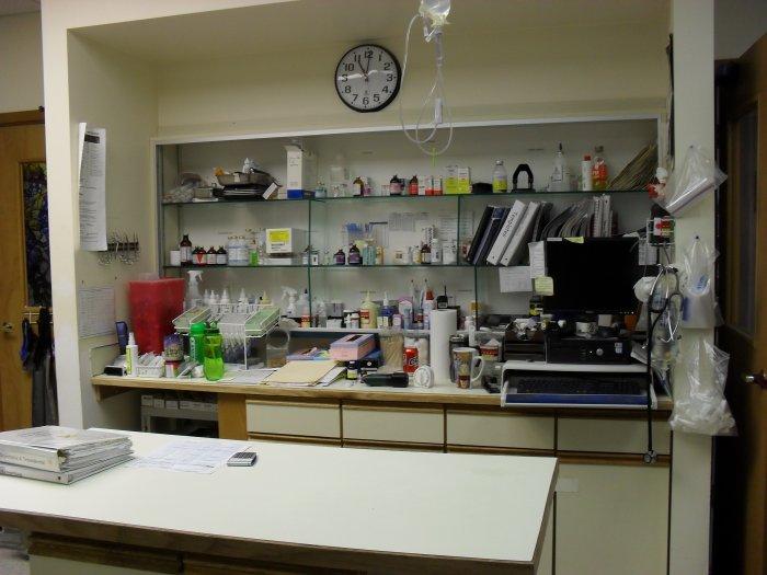 VCA Lynnwood Veterinary Center image 2