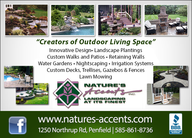 Nature's Accents Inc. image 0