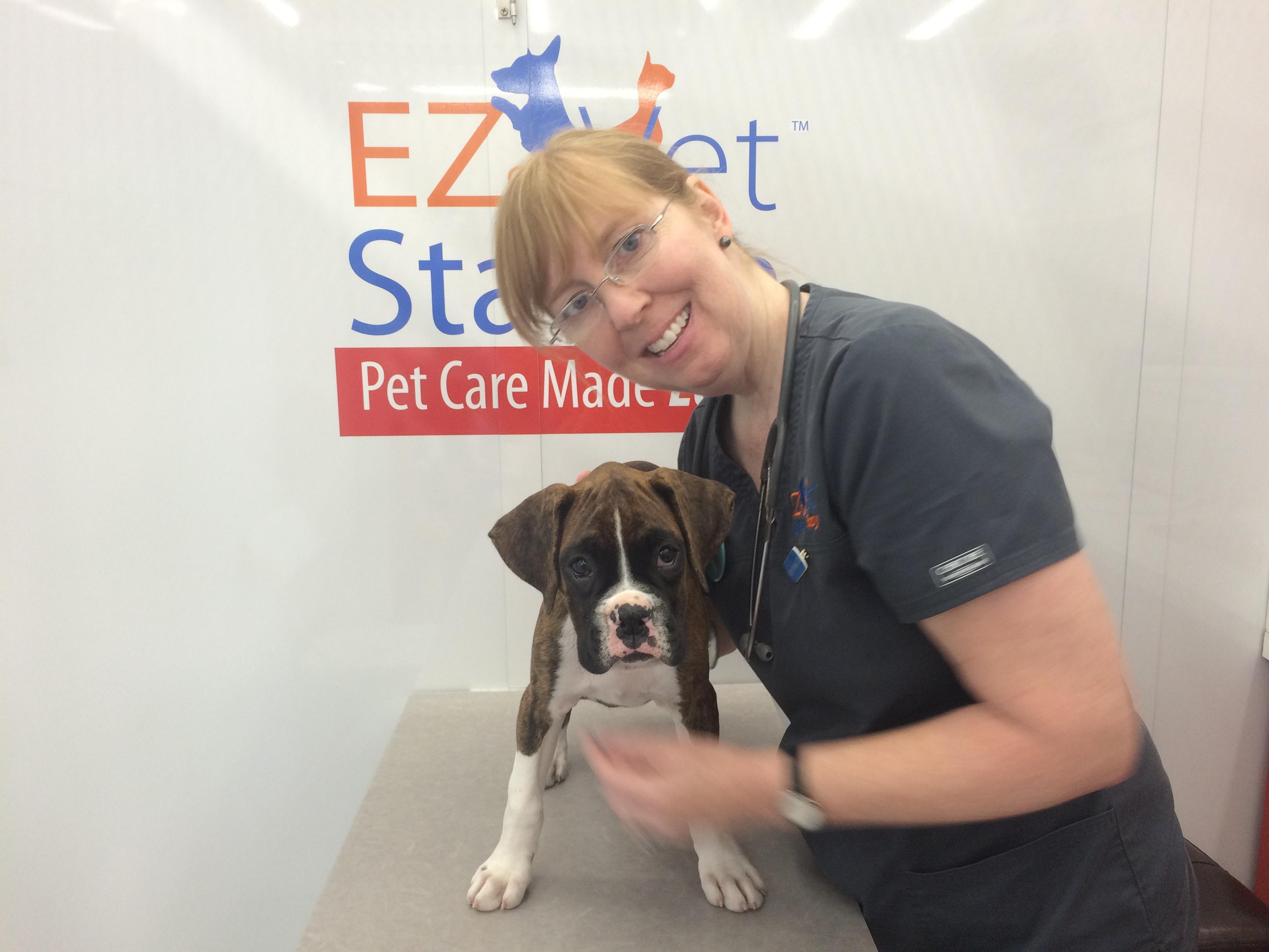 walk in pet clinic near me