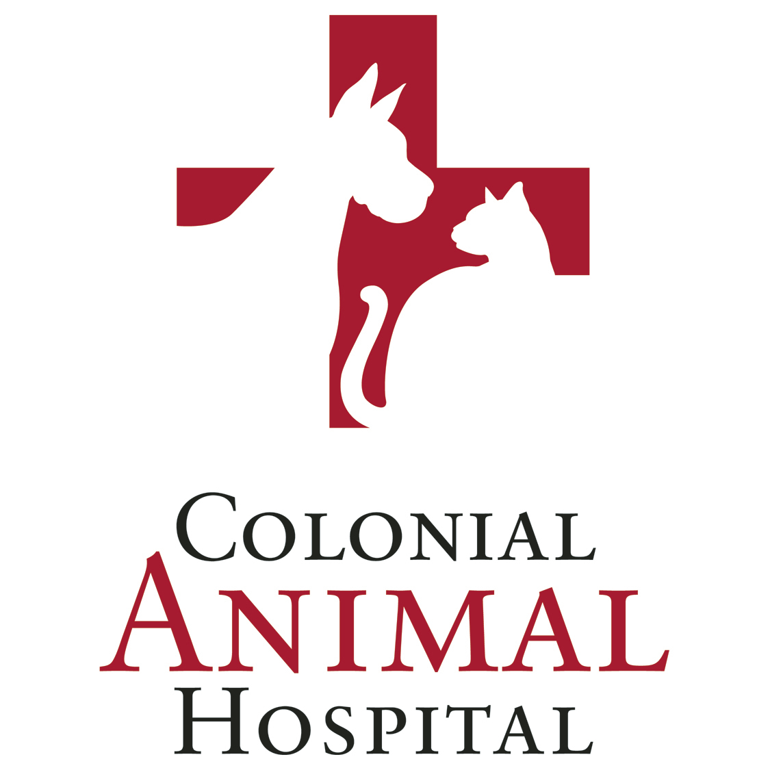 Colonial Animal Hospital image 4