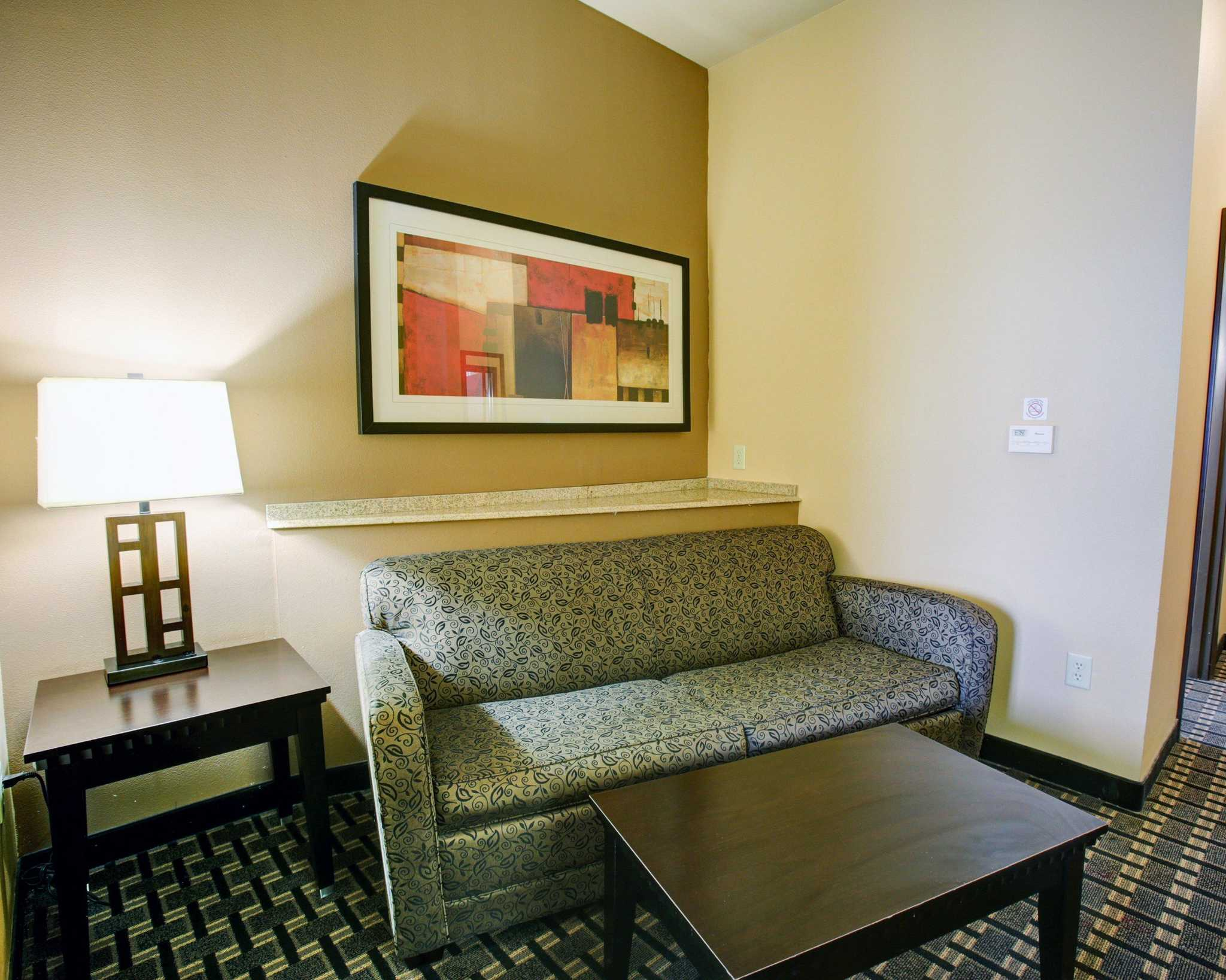 Comfort Suites Buda - Austin South image 12