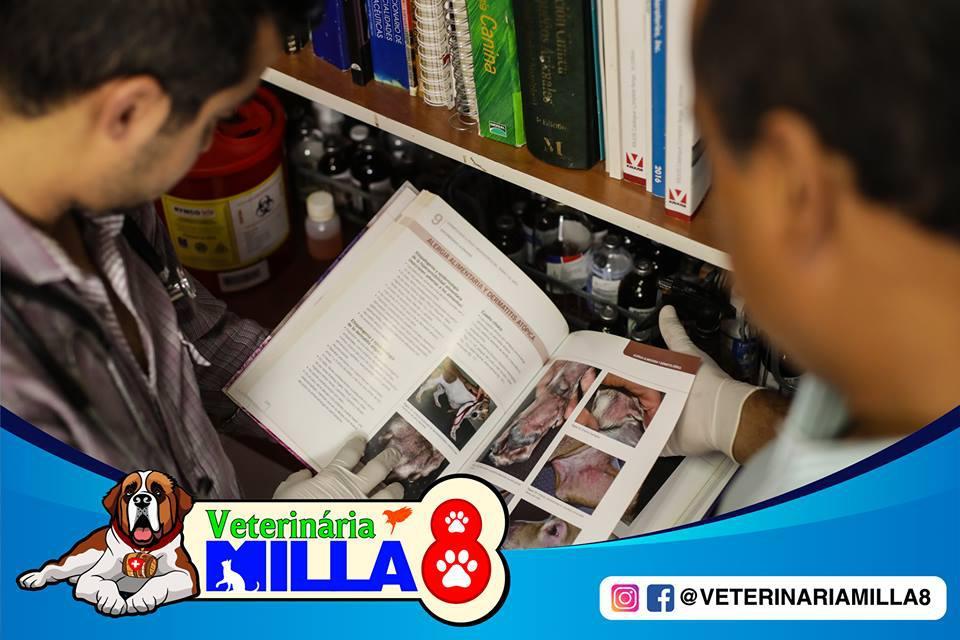 Clínica Veterinaria Milla 8