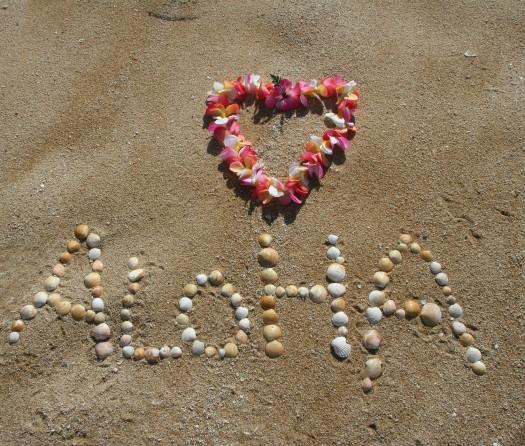 Ahh Aloha Kauai Vacation Services image 38