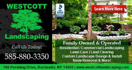 Westcott Landscaping image 0