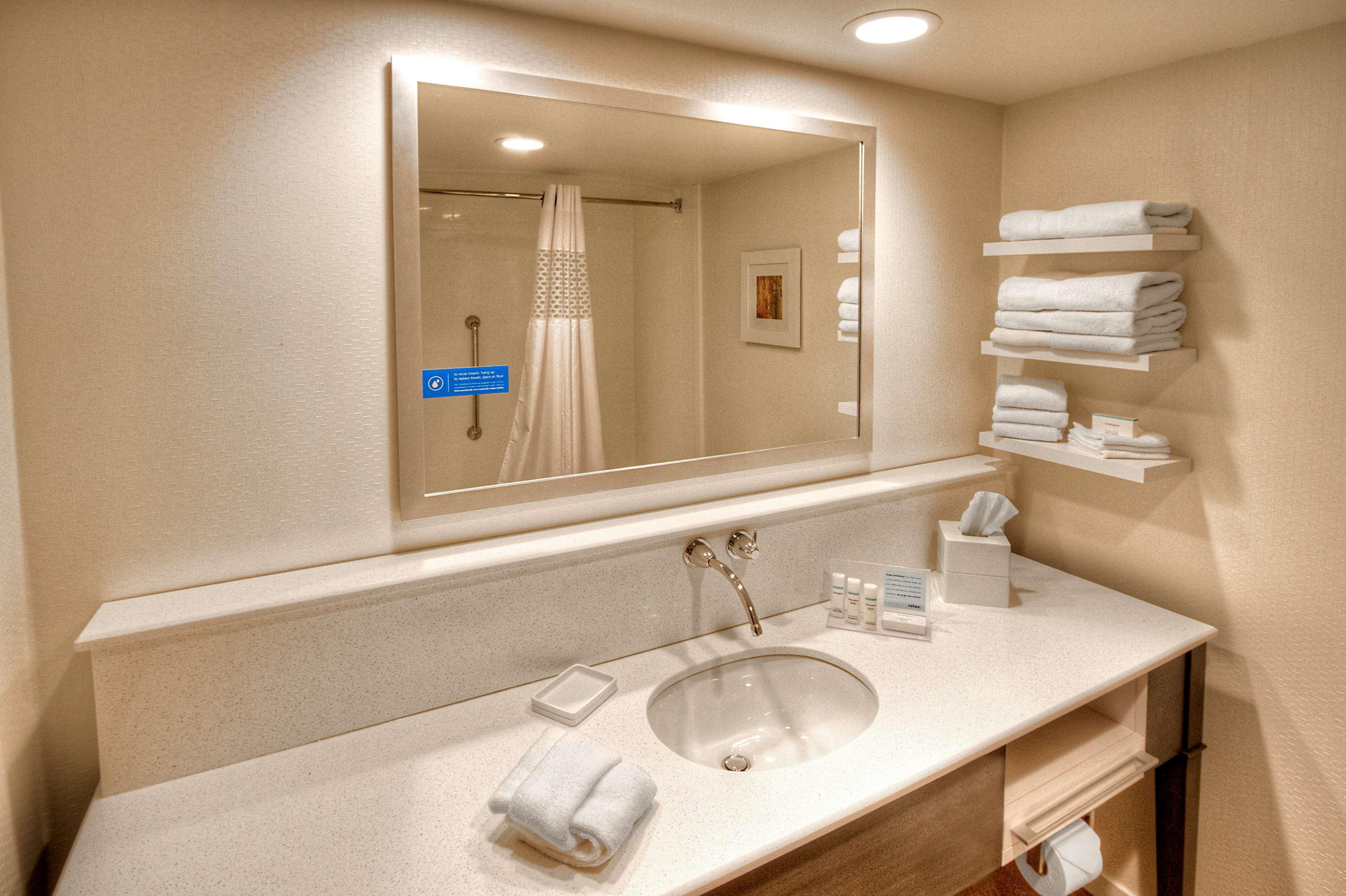 Hampton Inn & Suites Asheville-I-26 image 19