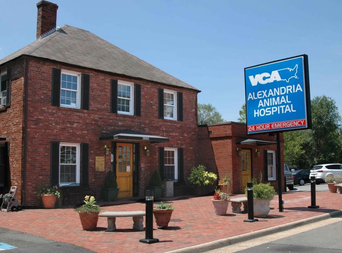 VCA Alexandria Animal Hospital image 7