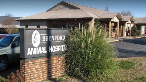 Brenford Animal Hospital image 0