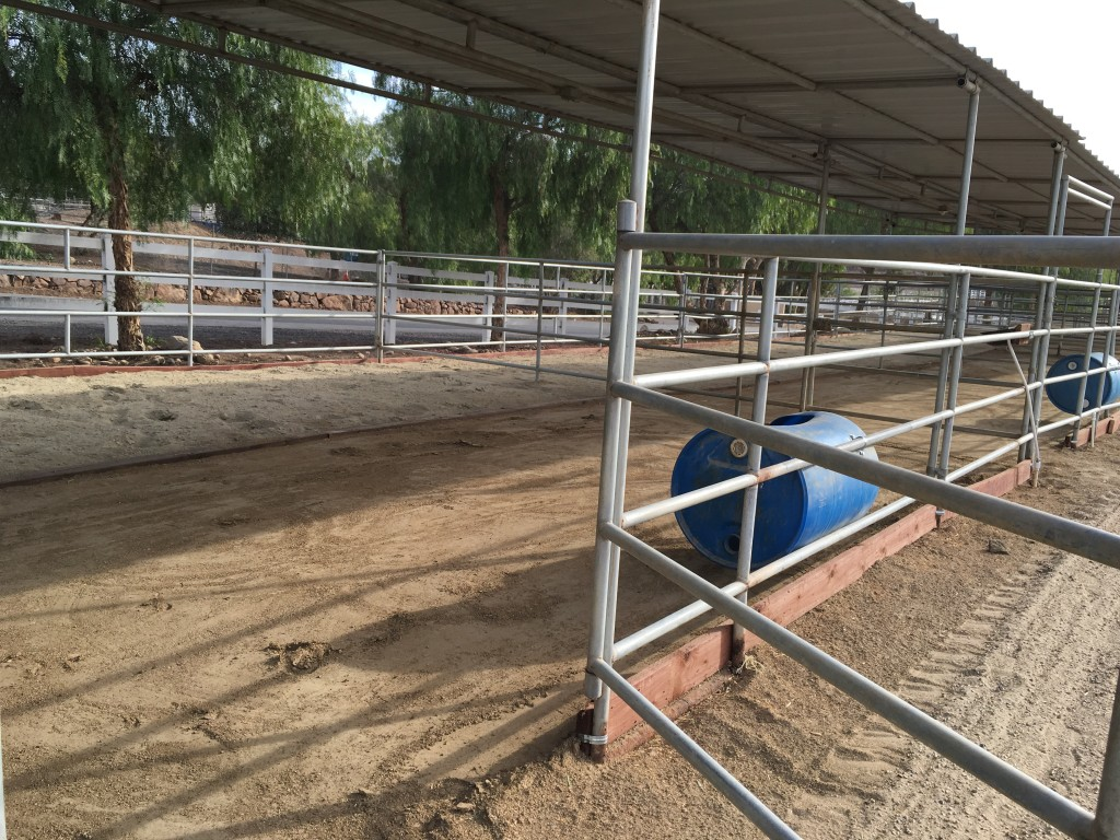 Lapeyre Ranch - Horse Boarding Facility image 6