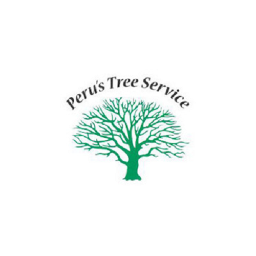 Peru's Tree Service Inc. image 9