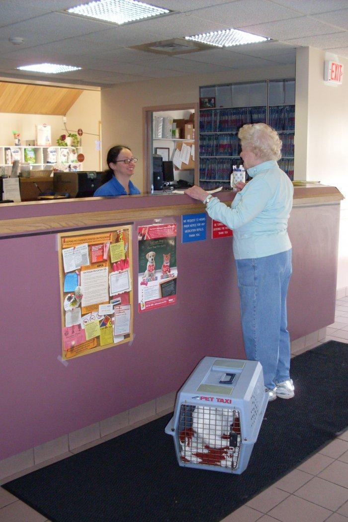 VCA Laconia Animal Hospital image 6