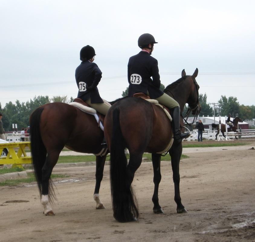 Pineridge Equestrian Center, LLC image 8