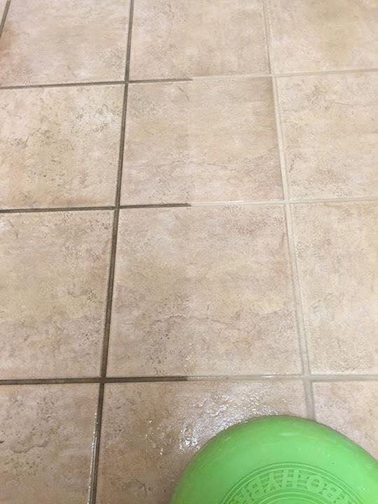 Dakota Floor Restoration image 1