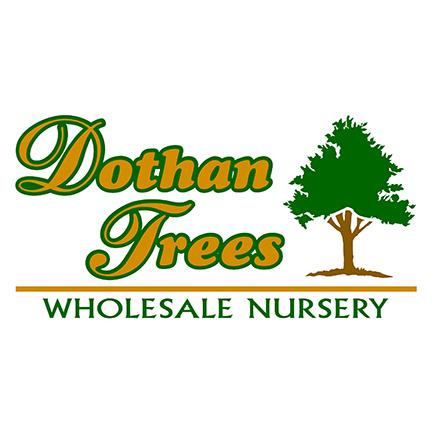Dothan Trees