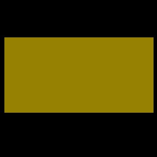 DESUAR Spa